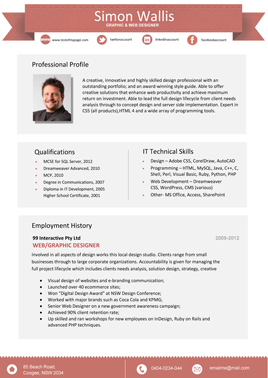professional resume template 1